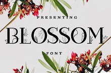Blossom Font + EXTRAS by Merilin in Slab Serif Fonts