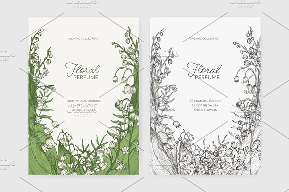 Lily Of The Valley Flowers Backdrop Illustrations Creative Market