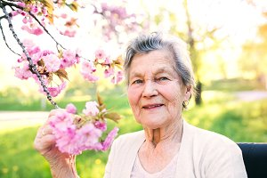 Elderly woman in wheelchair in spring nature.