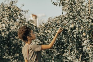 Afro girl picking apple from tree