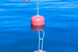 Group of red buoys on a sea surface