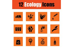 Ecology icon set
