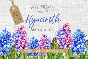 Colorful hyacinth PNG watercolor set