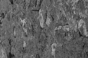Plaster  Background Black and White