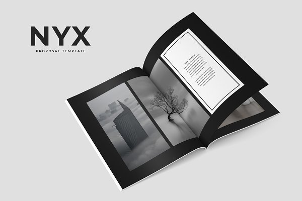 Brochure Templates: SlideStation - Nyx Proposal Template