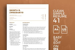 Resume Template 41