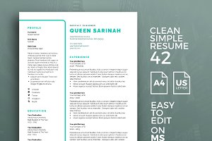 Resume Template 42