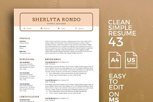 Resume Template 43