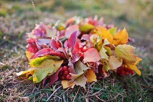 wreath  with autumn sheets