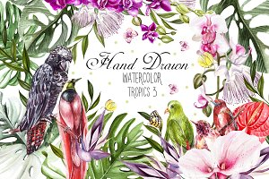 Hand Drawn Watercolor Tropic 3