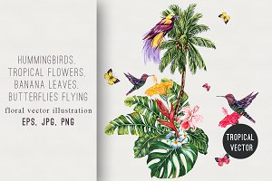 Tropical summer illustration