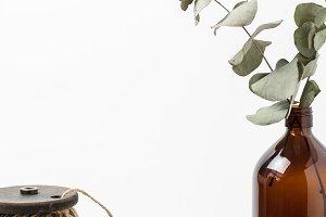 Stock Photo - Eucalyptus & Twine