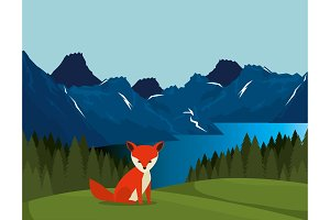 canadian landscape with fox scene