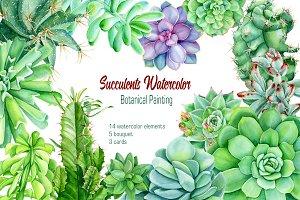Succulents watercolor