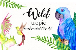 Wild tropic. Watercolor clipart