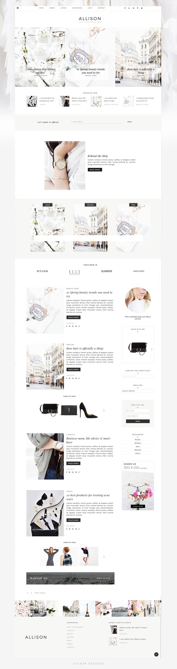Allison - Wordpress Theme