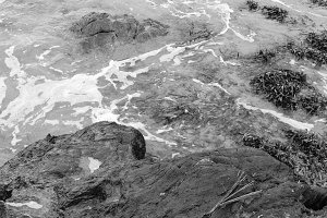 Sea in the Rocks in Black and White