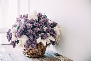Bouquet of white and purple lilac fl