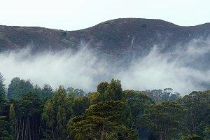 The Marin Headlands in the Fog, San Francisco , USA