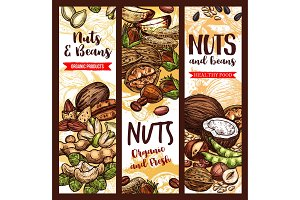 Vector sketch banner of nuts and fruit beans seeds