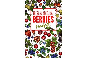 Natural fresh berries sketch vector poster