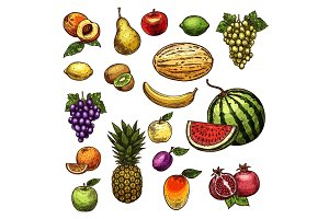 Fruits natural fresh organic sketch vector icons