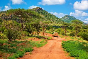 Savanna landscape in Kenya, Africa