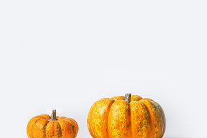 Two pumpkins on white background