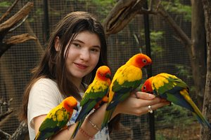 teenager girl in asian zoo feeding ara parrots