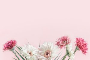 Flowers bunch at pastel pink