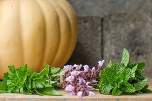 Still life of aromatic herbs.