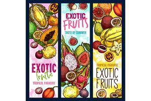 Exotic fruits vector tropical fruit sketch banners