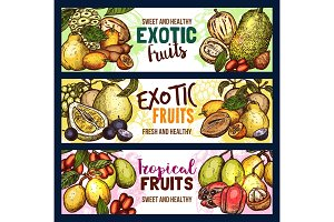 Vector fruits exotic tropical fruit sketch banners