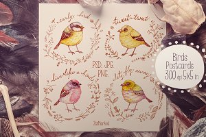 Birds greeting Cards & Patterns