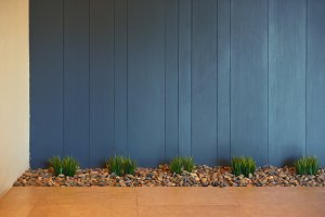 Plants and stones with blue wood background, interior decoration