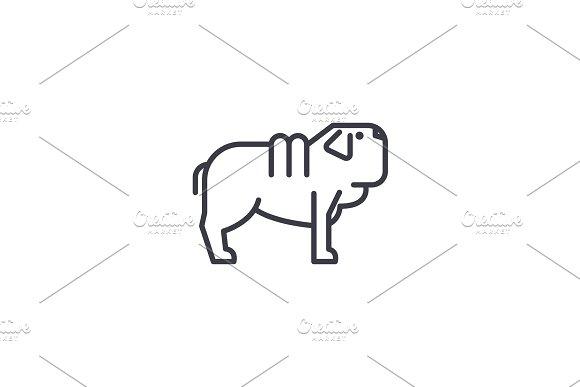 shar pei dog vector line icon, sign, illustration on background, editable strokes