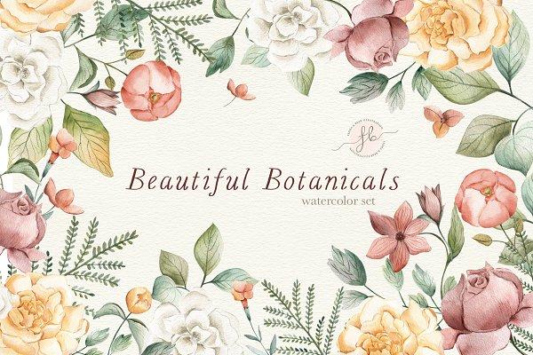 Illustrations and Illustration Products: Flora & Bear - Beautiful Botanicals