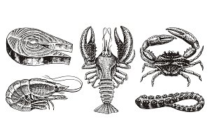 Crustaceans, shrimp, lobster or crayfish, salmon steak, crab with claws. River and lake or sea creatures. Freshwater aquarium. Seafood for the menu. Engraved hand drawn in vintage sketch.