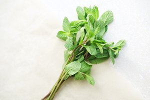 Overhead view of fresh mint twigs