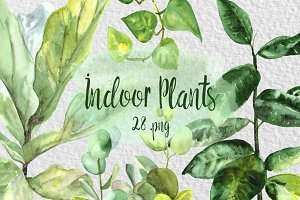 Watercolor Indoor Plants Clipart Set