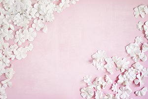 White Paper Flowers on Pink