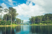 beautiful landscape of sri lanka by Ivanna Pavliuk in Nature