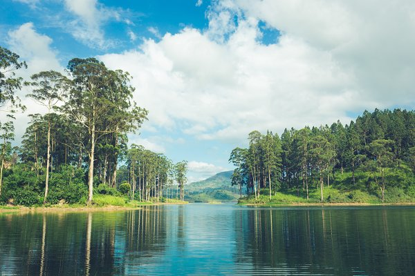 Nature Stock Photos: Ivanna - beautiful landscape of sri lanka