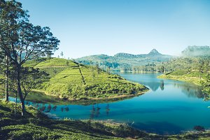 beautiful landscape of sri lanka