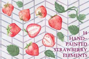 14 Handpainted Strawberry Elements