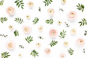 Background made of pink ranunculus