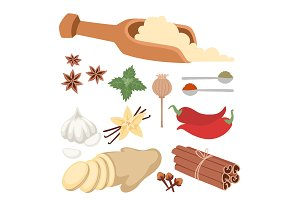 Seasoning food herbs natural healthy spices condiments organic vegetable vector ingredient.