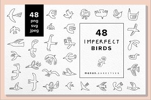 48 x vector hand drawn BIRDS