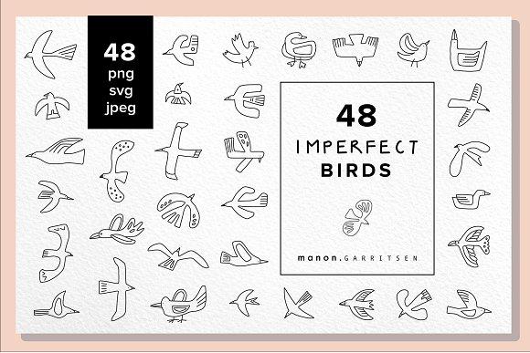 48 x vector hand drawn BIRDS