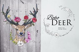 Deer illustration in line and color